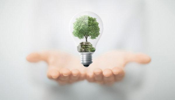 Utilité Greenlog - Plateforme logistique verte éco-responsable